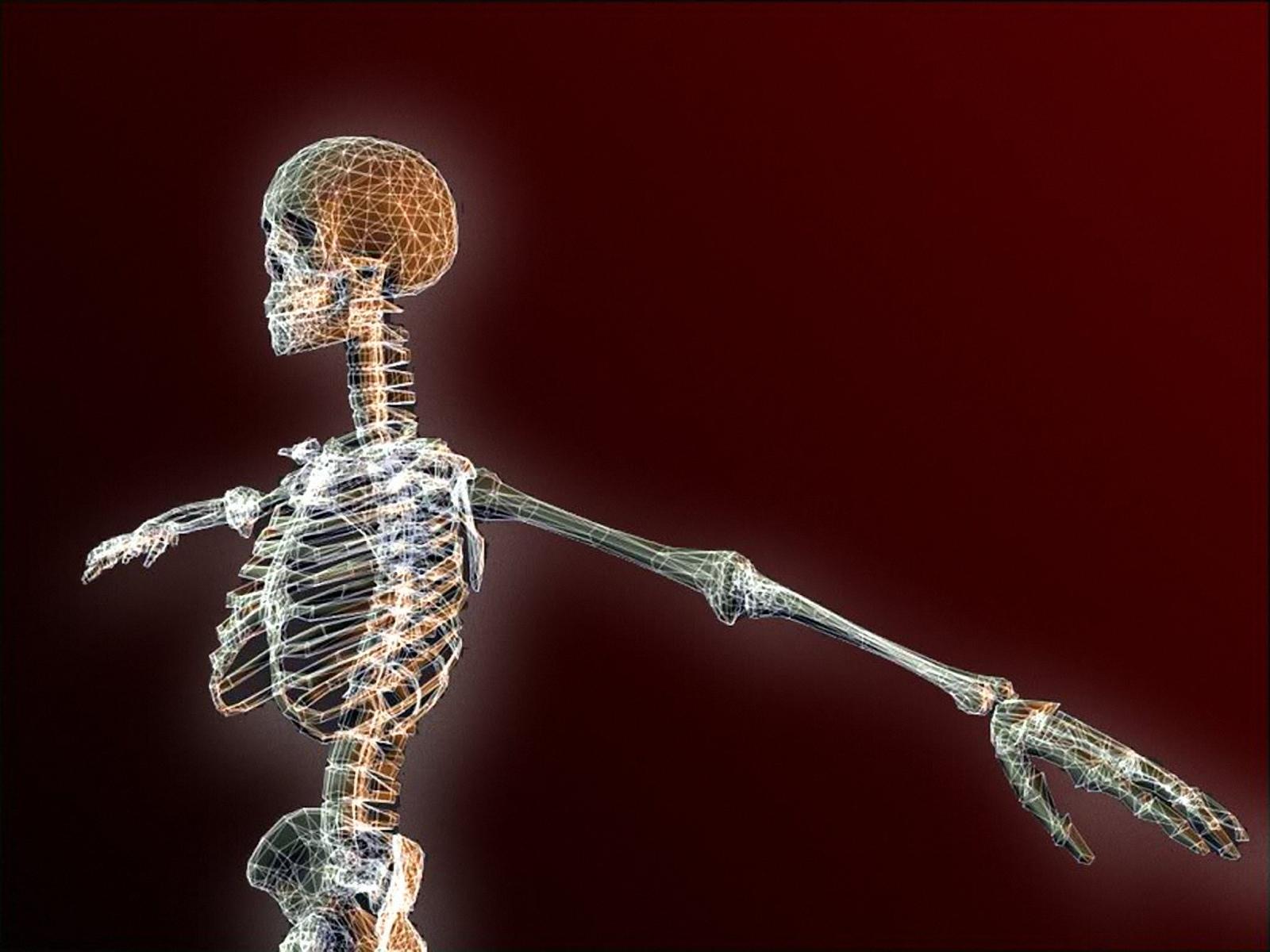 Esqueleto Humano-694836 - Periódico NMX